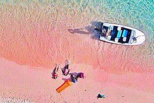 Pantai Pink Sailing Komodo