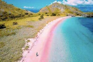 Paket trip pink beach